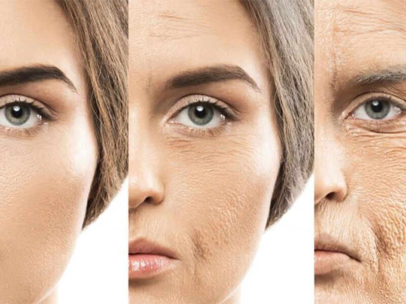 What is Collagen? What Are the Benefits of Collagen?